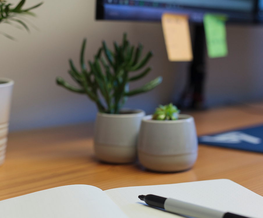 A pen and notepad with plants in the background
